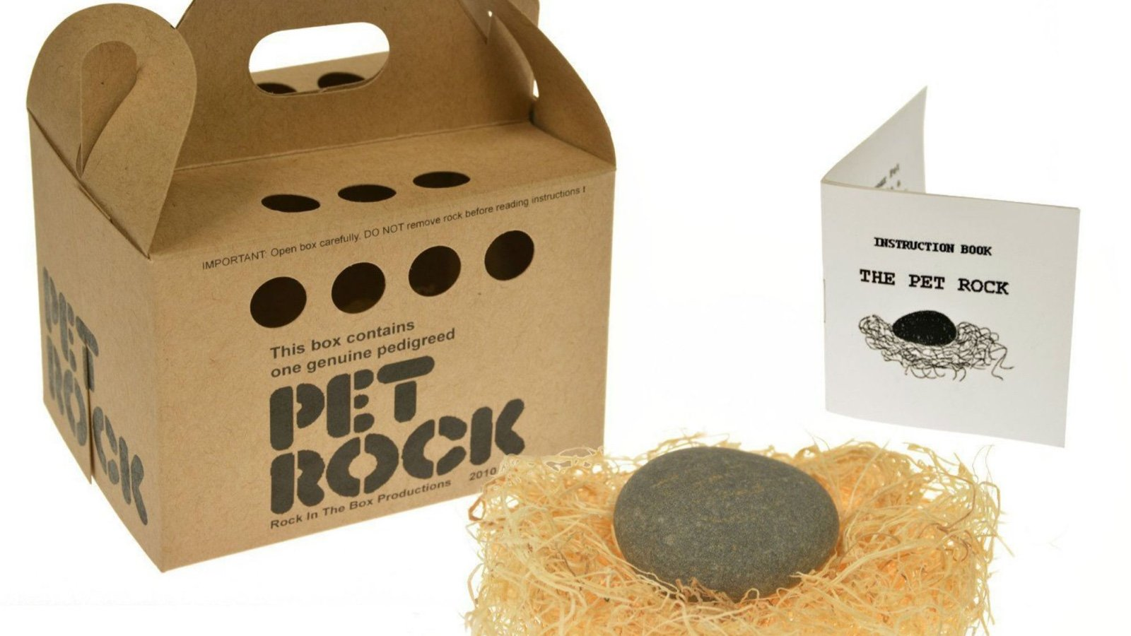 Crazy Business Ideas The Pet Rock